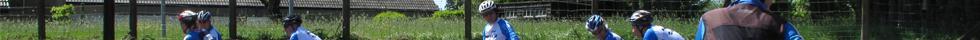 Grijzelente oudere wielrenners